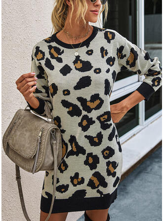 Leopard Long Sleeves Sheath Above Knee Casual Sweater Dresses